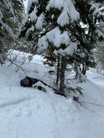 This is Dawn's epic stop...don't worry, the tree wasn't injured!!